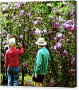 In The Lilac Garden Canvas Print