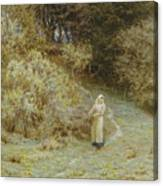 In The Primrose Wood Canvas Print