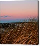 In The Rushes Canvas Print