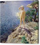 In The Skerries Canvas Print