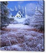 In The Snowy Forest Canvas Print
