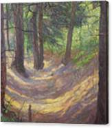 in the Vienna Woods Canvas Print