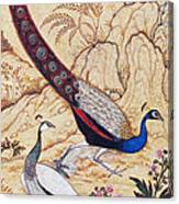 India: Peafowl, C1610 Canvas Print