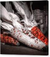 Indian Corn Still Life Canvas Print
