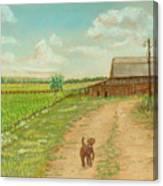 Indiana Farm Canvas Print