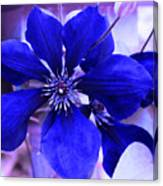 Indigo Flower Canvas Print