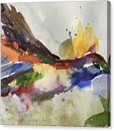 Inflight Canvas Print