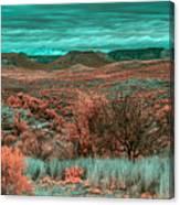 Infrared Arizona Canvas Print