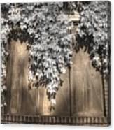 Infrared Botanical Sepia  Canvas Print