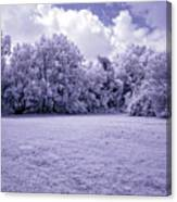 Infrared In Glasgow Ky Canvas Print