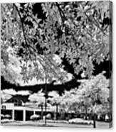 Infrared Indian River State College Hendry Campus #5 Canvas Print