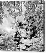 Infrared Indian River State College Hendry Campus #6 Canvas Print