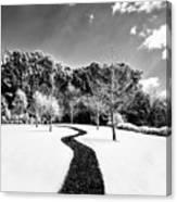 Infrared Parkland Canvas Print