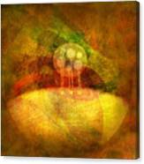 Infused... Canvas Print