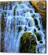Inglis Falls Canvas Print