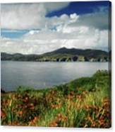 Inishowen Peninsula, Co Donegal Canvas Print