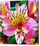 Inner Flower Of A Goddess Canvas Print