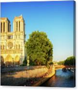 Notre Dame In Sunset Light Canvas Print