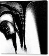 Inside A Serial Rapist Canvas Print