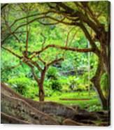 Inside Allerton Garden Canvas Print