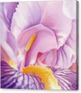 Inside Iris Canvas Print