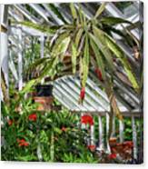 Inside The Greenhouse Canvas Print
