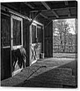 Inside The Horse Barn Black And White Canvas Print