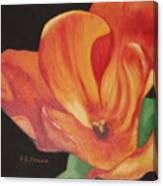 Inside The Tulip Canvas Print