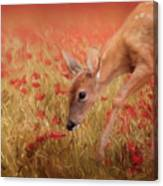 Inspecting The Poppies Canvas Print