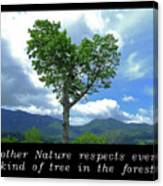 Inspirational-mother Nature Canvas Print