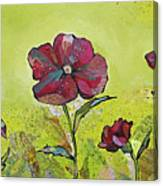 Intensity Of The Poppy II Canvas Print