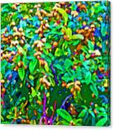 Intergalactic Orange Grove Canvas Print