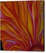 Internal Floral Canvas Print