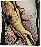 Internal Landscape Three Canvas Print
