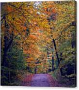 Into Fall Canvas Print