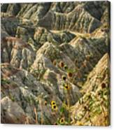 Into The Badlands South Dakota #3 Canvas Print