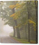 Down The Mountain, Into The Fog Canvas Print