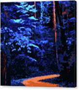 Into The Forest Of Night Canvas Print