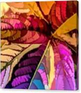 Into The Rainbow Canvas Print
