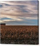 Iowa Corn Fields In The Fall Canvas Print