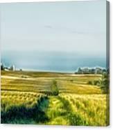 Iowa Cornfield Panorama Canvas Print
