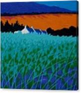 Ireland - West Cork  Canvas Print