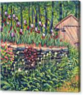 Iris Accents Canvas Print