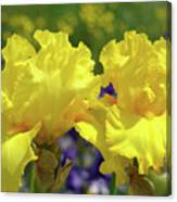 Iris Flowers Garden Art Yellow Irises Baslee Troutman Canvas Print