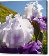 Iris Flowers Purple White Irises Poppy Hillside Landscape Art Prints Baslee Troutman Canvas Print