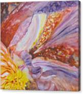Iris Intricacies Canvas Print