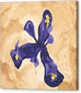 Iris Iv Pixie  Canvas Print