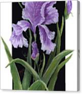 Iris One Canvas Print