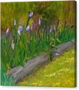 Iris Procession Canvas Print