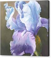Iris Tears Canvas Print